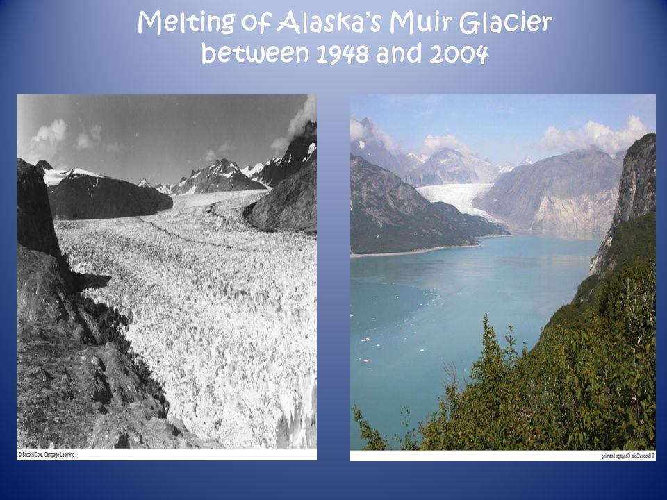 Melting of Alaska's Muir Glacier between 1948 and 2004