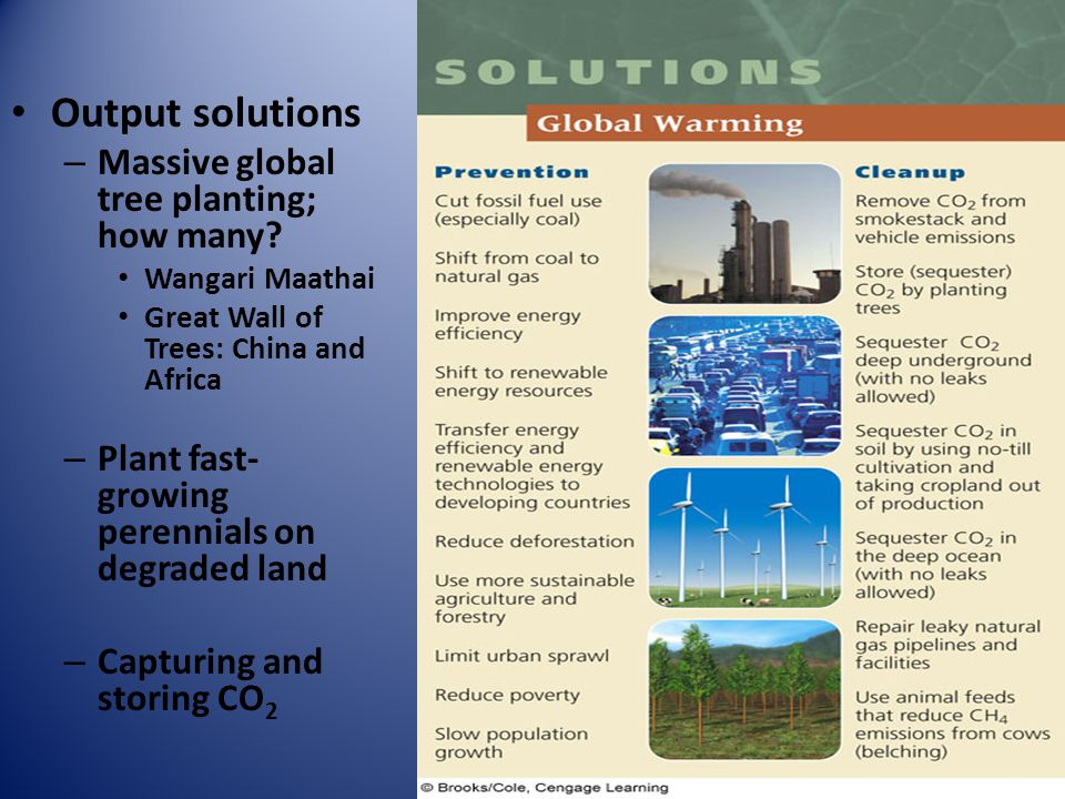 Output solutions Massive global tree planting; how many