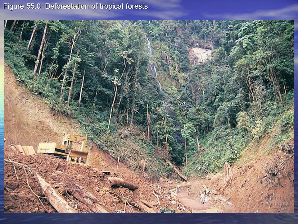 Figure 55.0 Deforestation of tropical forests