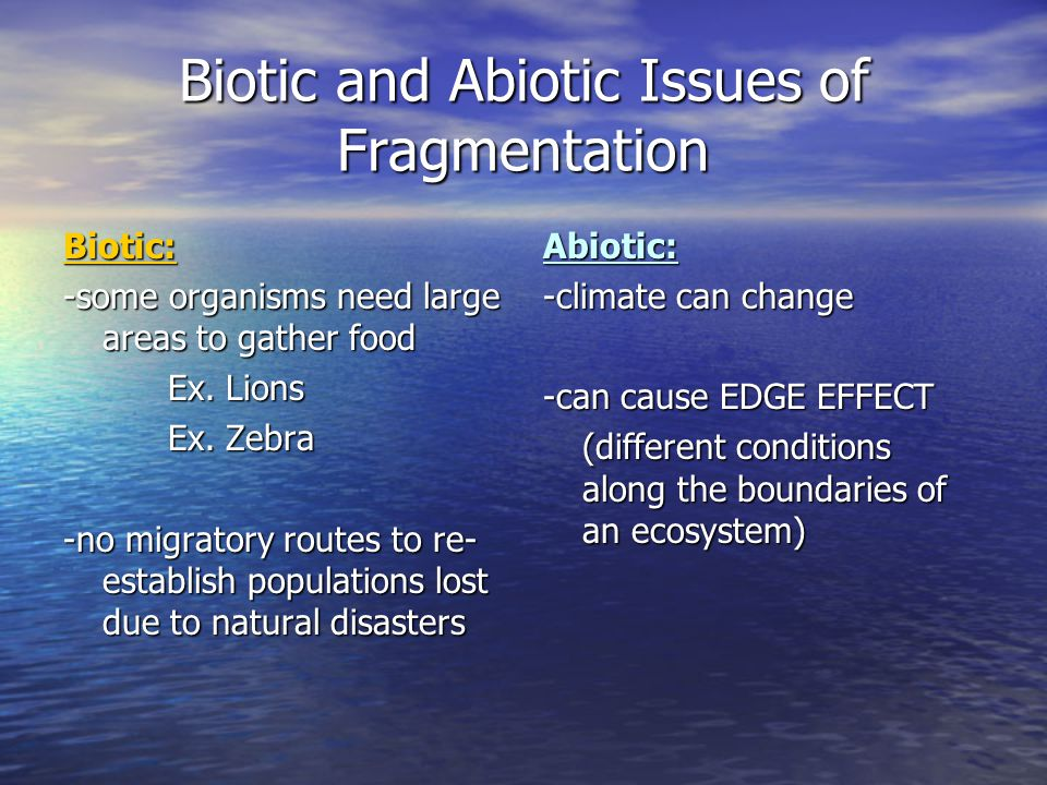 Biotic and Abiotic Issues of Fragmentation