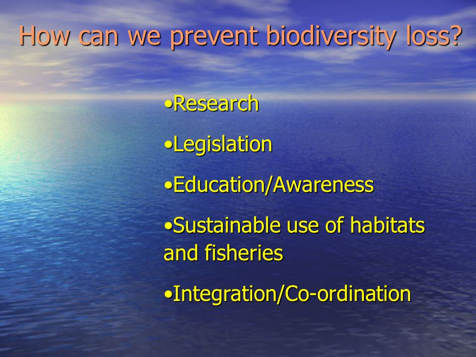 How can we prevent biodiversity loss