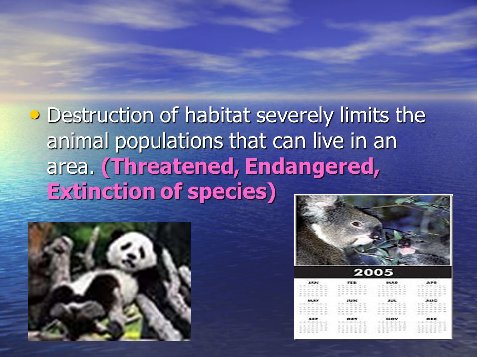 Destruction of habitat severely limits the animal populations that can live in an area.