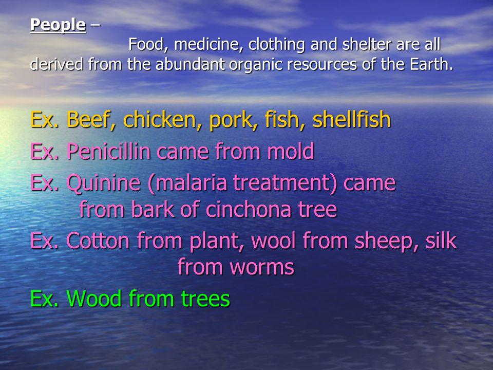 Ex. Beef, chicken, pork, fish, shellfish Ex. Penicillin came from mold