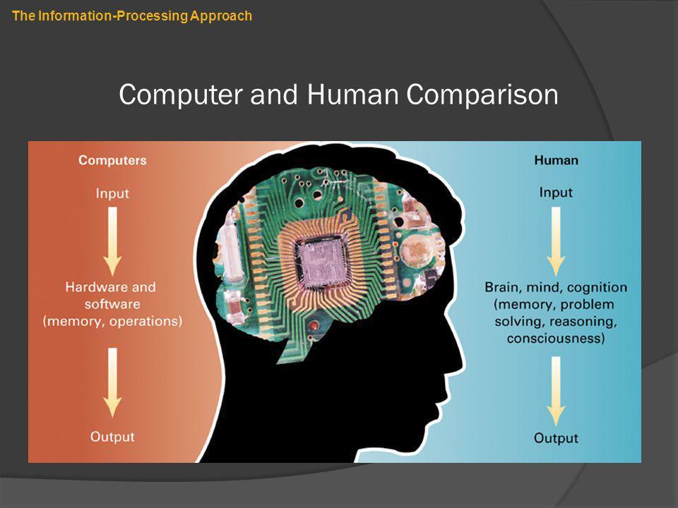 Computer and Human Comparison