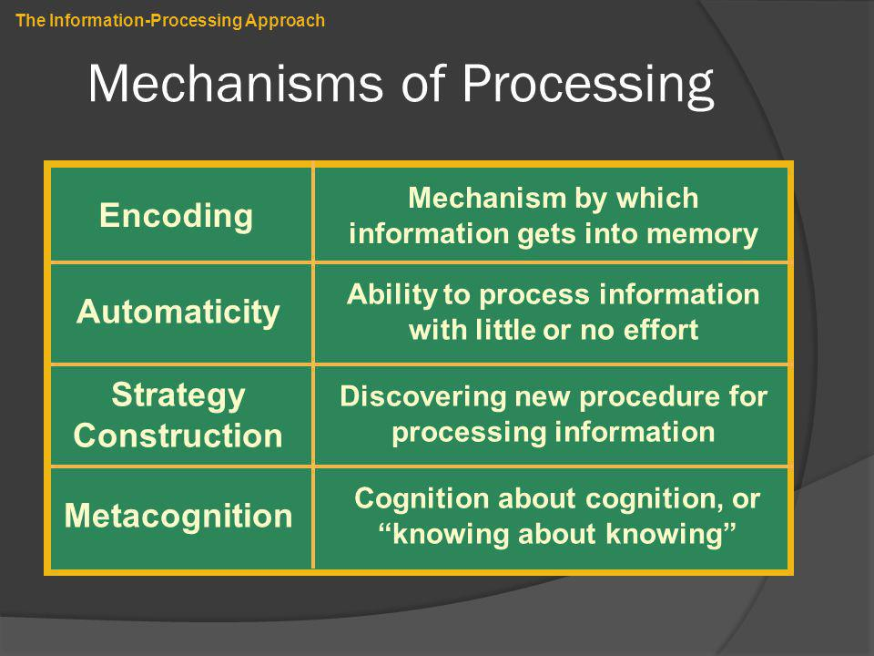 Mechanisms of Processing