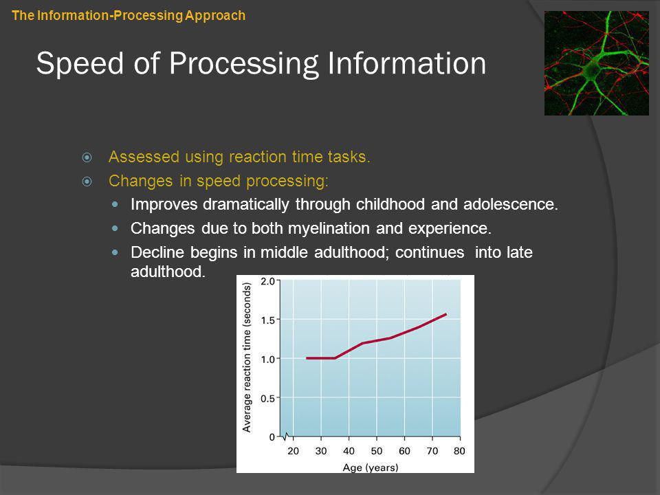 Speed of Processing Information