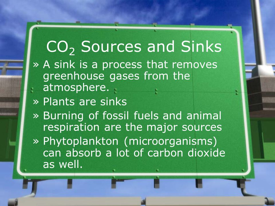 CO2 Sources and Sinks A sink is a process that removes greenhouse gases from the atmosphere. Plants are sinks.