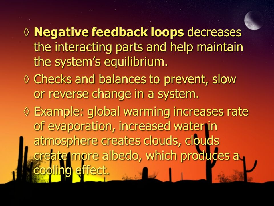 Negative feedback loops decreases the interacting parts and help maintain the system's equilibrium.