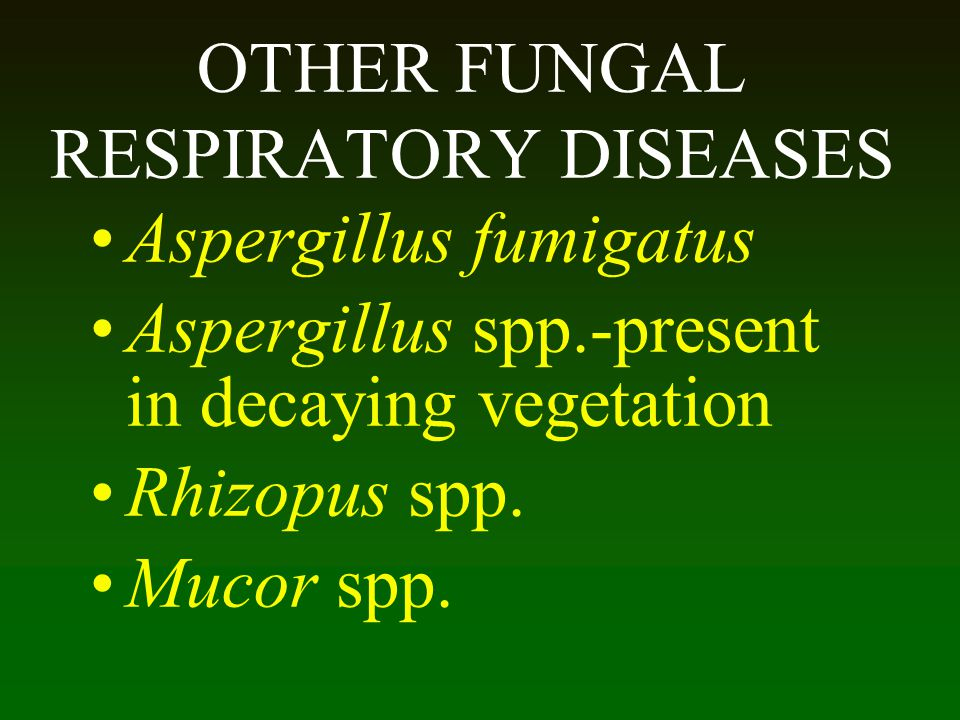 OTHER FUNGAL RESPIRATORY DISEASES