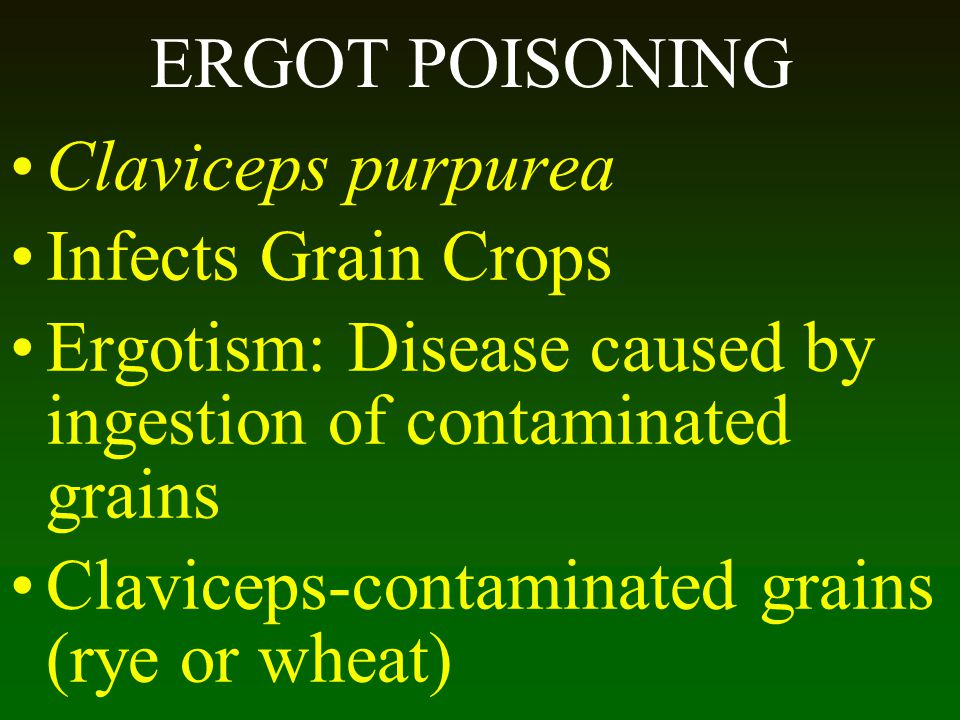 Ergotism: Disease caused by ingestion of contaminated grains