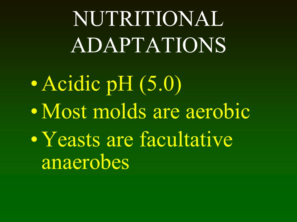 NUTRITIONAL ADAPTATIONS