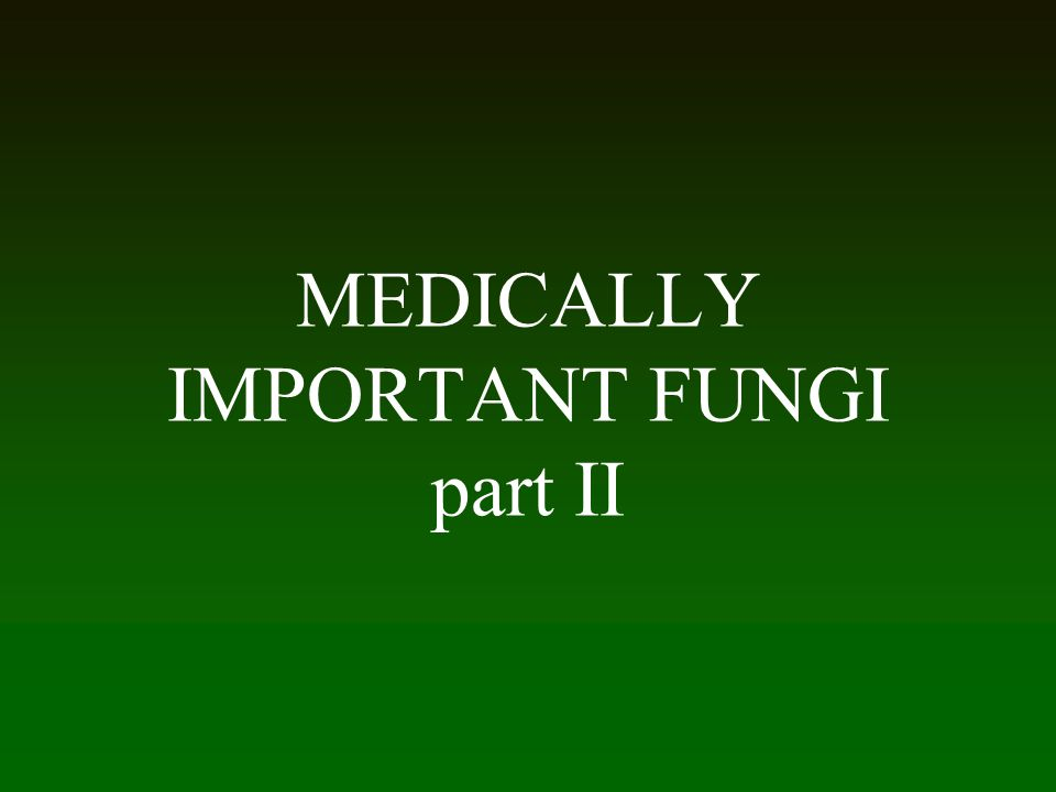 MEDICALLY IMPORTANT FUNGI part II