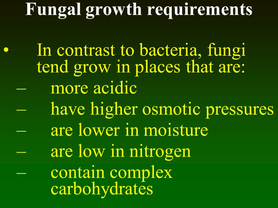 Fungal growth requirements