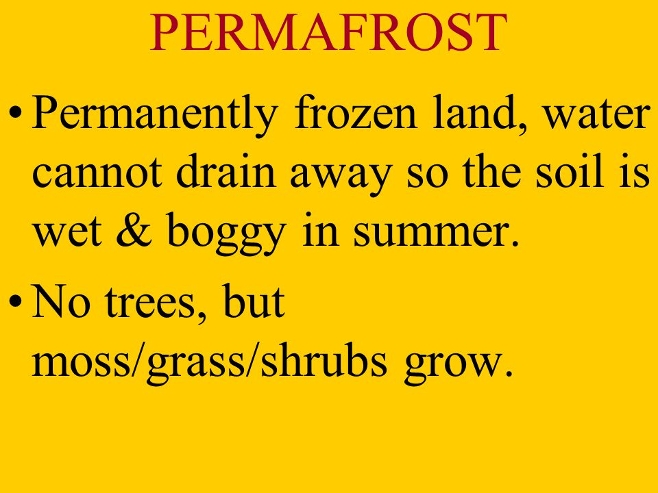 PERMAFROST Permanently frozen land, water cannot drain away so the soil is wet & boggy in summer.