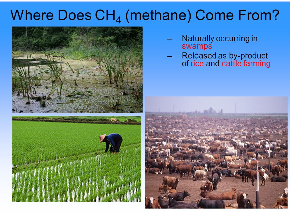 Where Does CH4 (methane) Come From