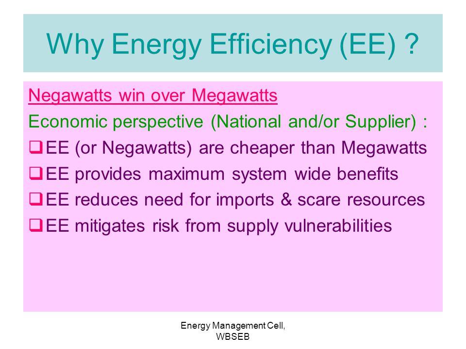 Why Energy Efficiency (EE)