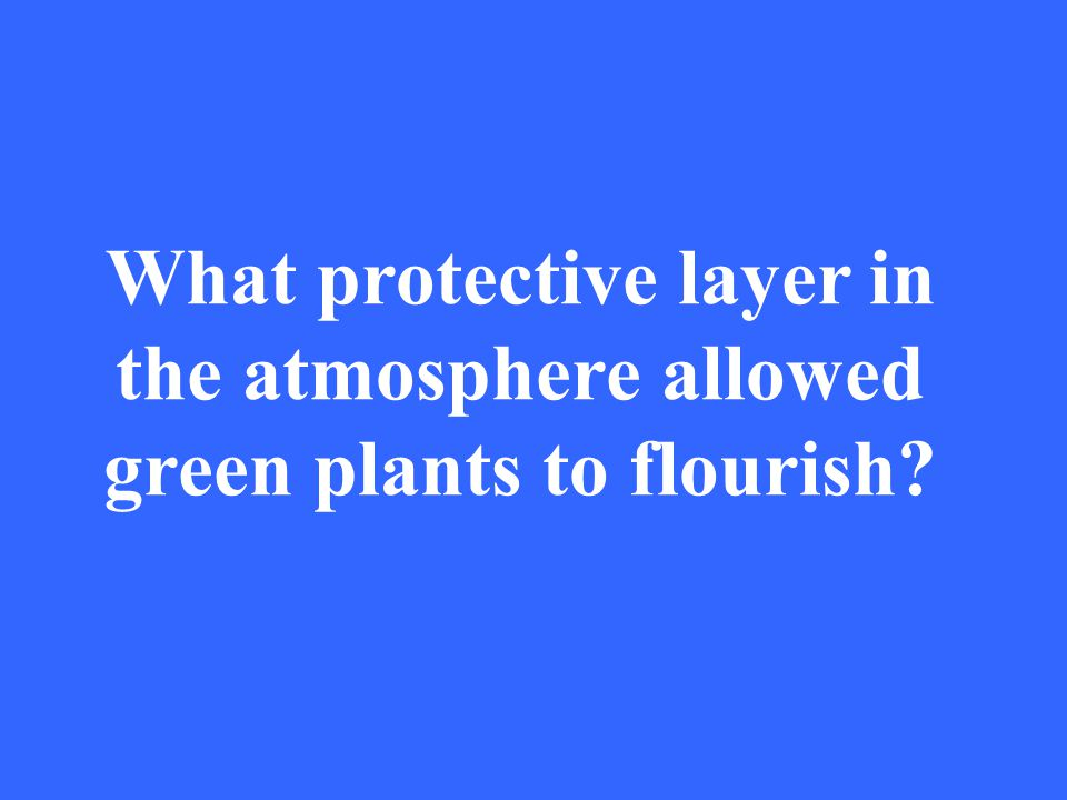 What protective layer in the atmosphere allowed green plants to flourish