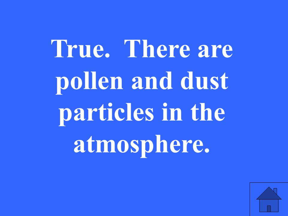 True. There are pollen and dust particles in the atmosphere.