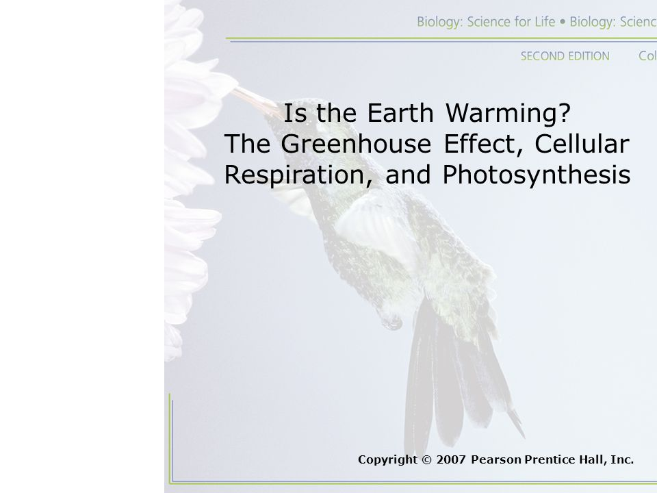 The Greenhouse Effect, Cellular Respiration, and Photosynthesis