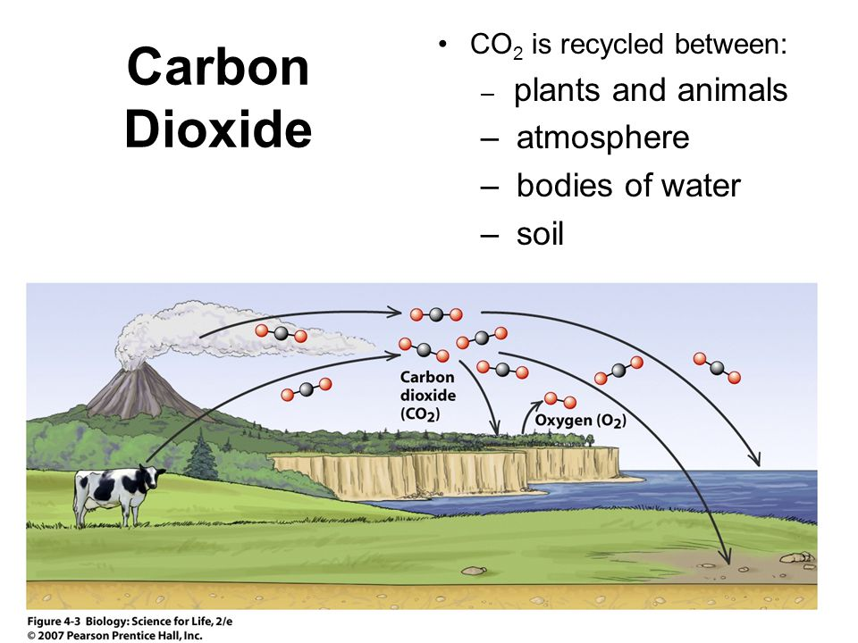 Carbon Dioxide atmosphere bodies of water soil
