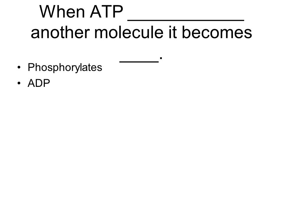 When ATP ____________ another molecule it becomes ____.