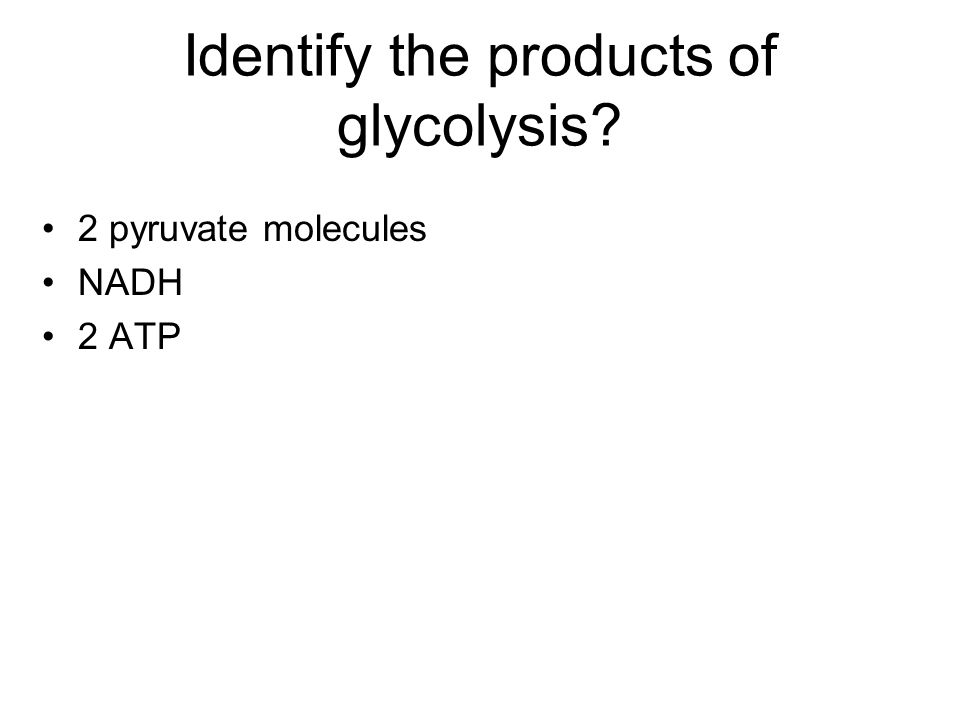 Identify the products of glycolysis