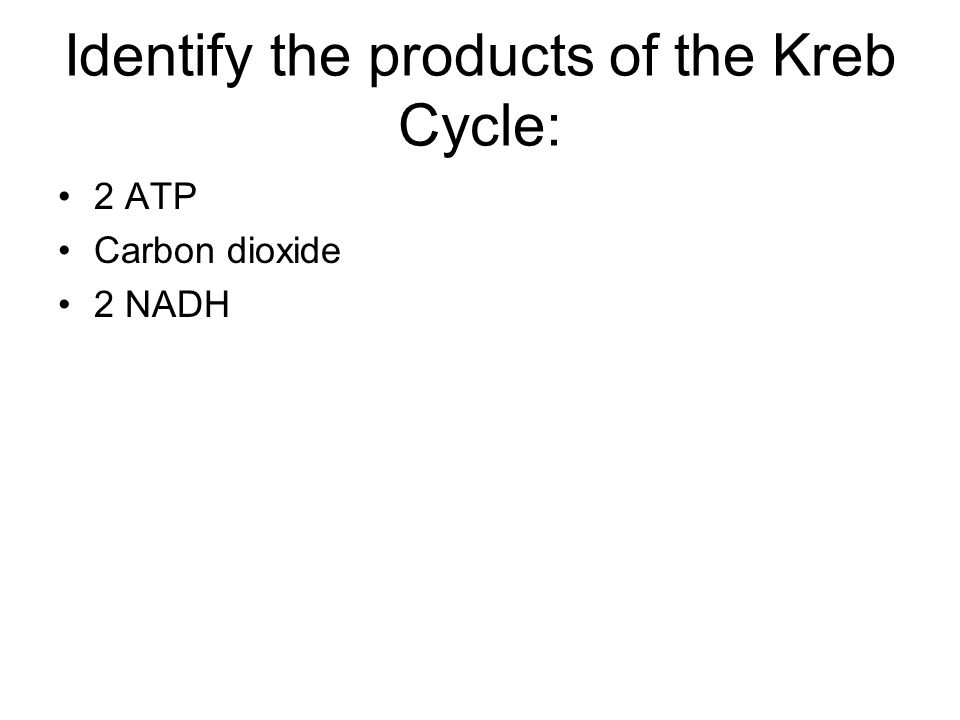 Identify the products of the Kreb Cycle: