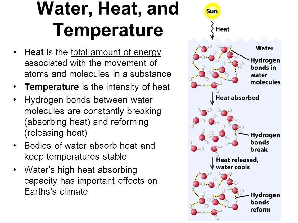 Water, Heat, and Temperature