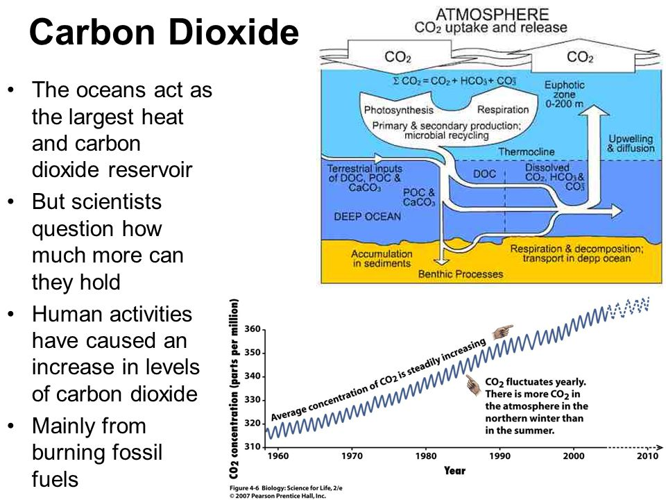 Carbon Dioxide The oceans act as the largest heat and carbon dioxide reservoir. But scientists question how much more can they hold.