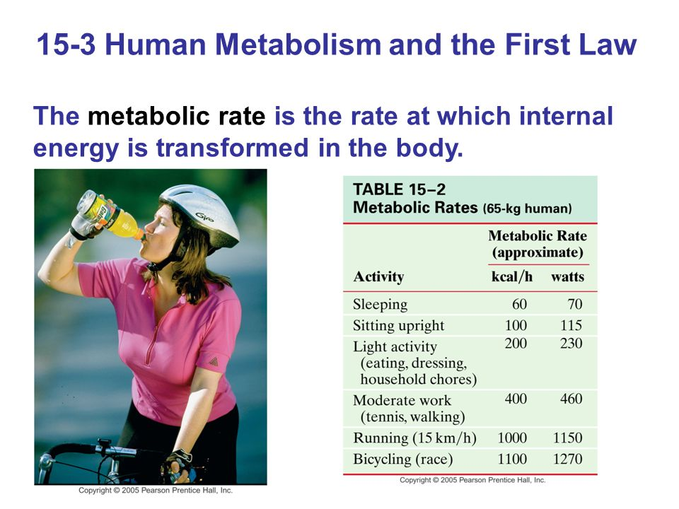 15-3 Human Metabolism and the First Law