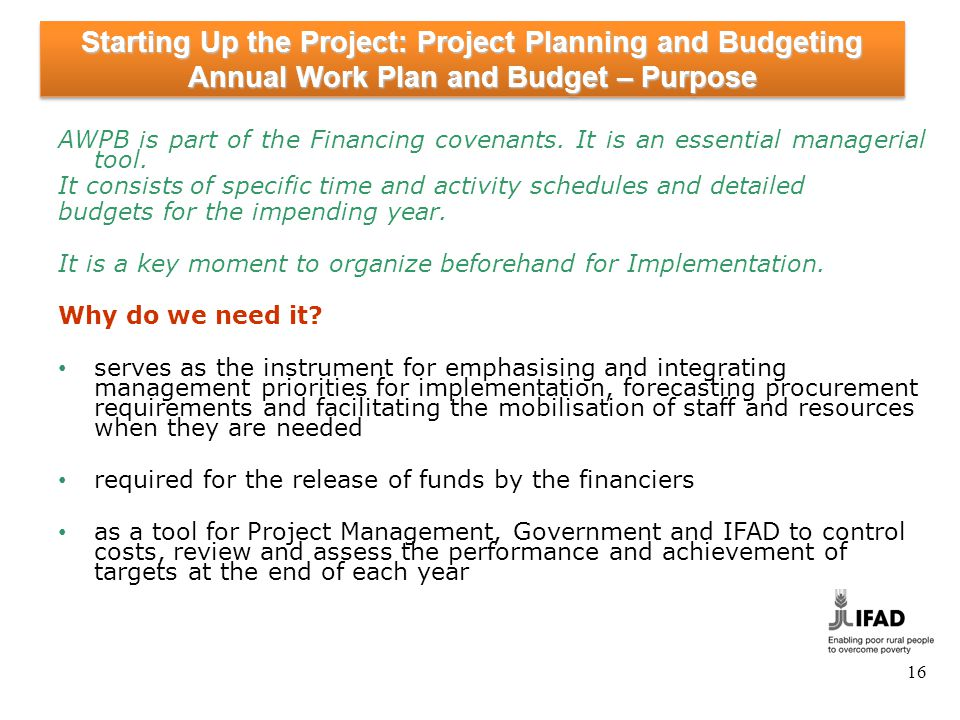 Starting-Up the Project: Project Planning and Budgeting