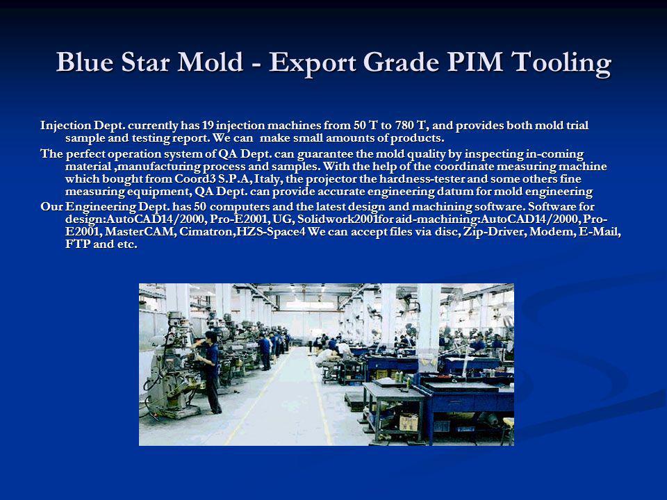 Blue Star Mold - Export Grade PIM Tooling