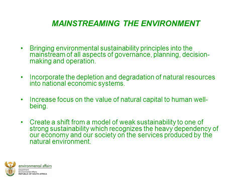 MAINSTREAMING THE ENVIRONMENT