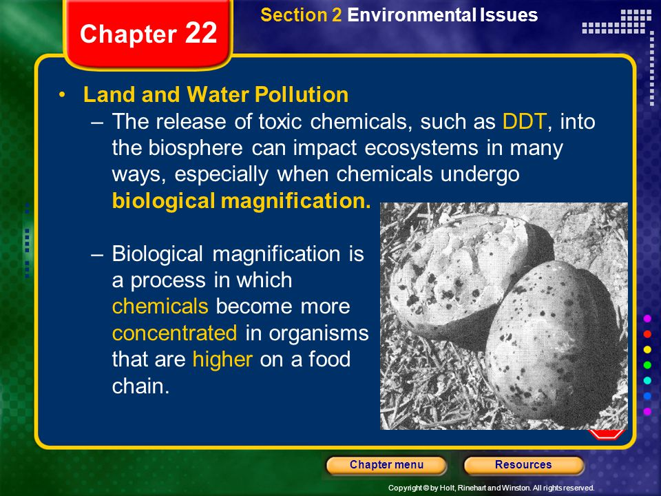 Chapter 22 Land and Water Pollution