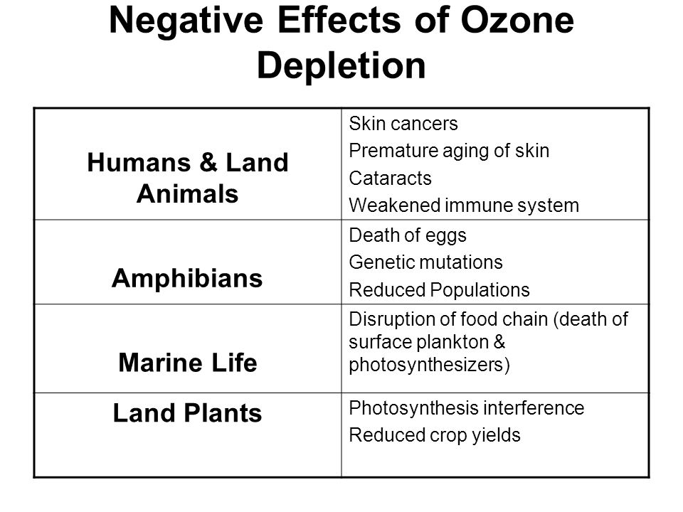 Negative Effects of Ozone Depletion