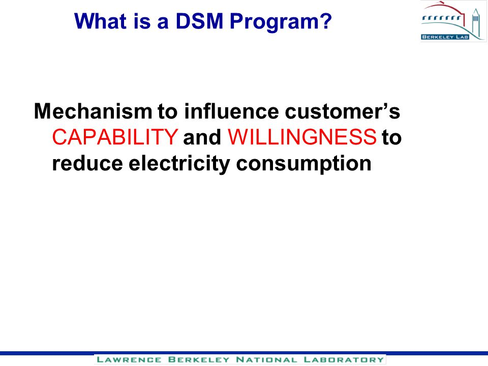 What is a DSM Program.