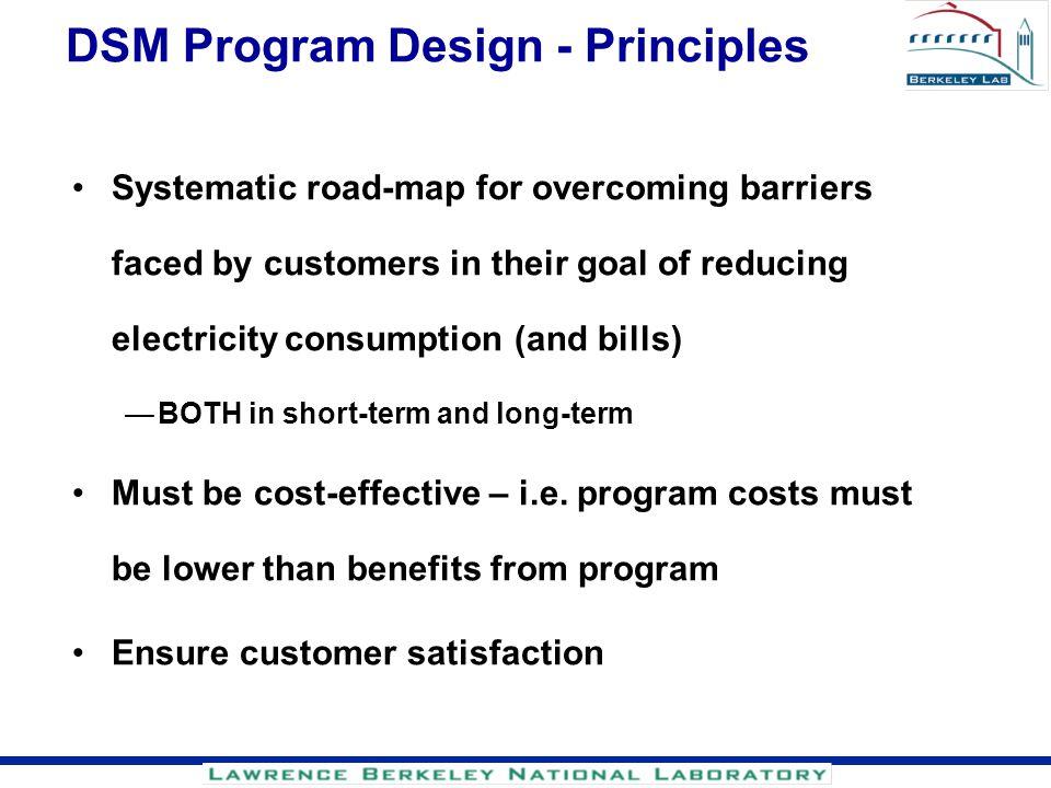 DSM Program Design - Principles