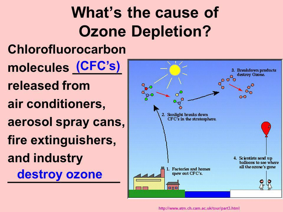 What's the cause of Ozone Depletion
