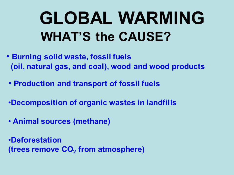 GLOBAL WARMING WHAT'S the CAUSE