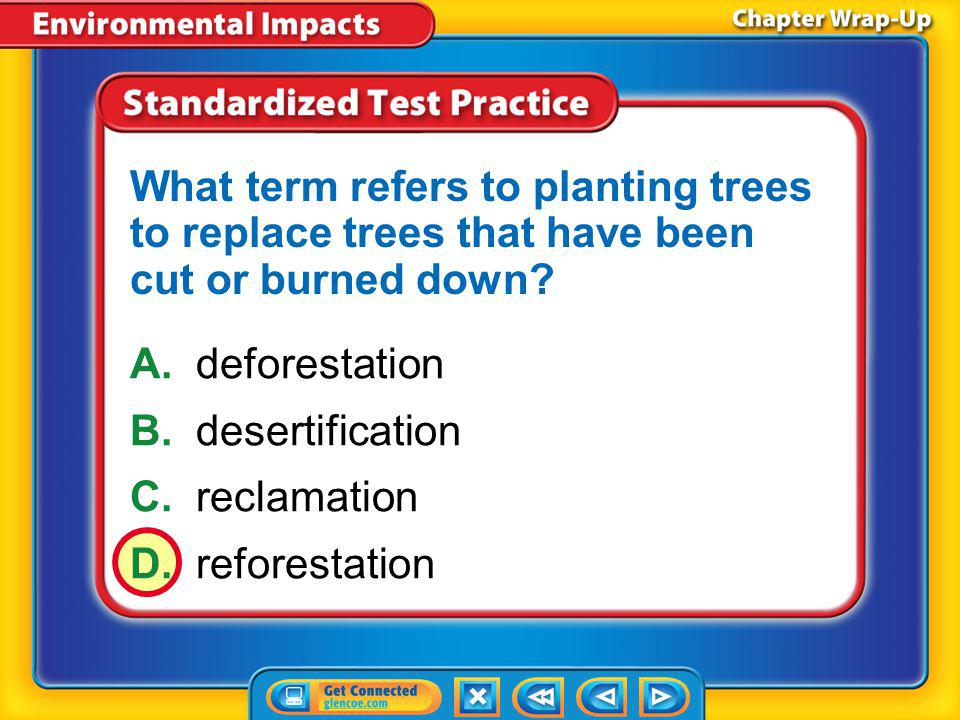 What term refers to planting trees to replace trees that have been cut or burned down