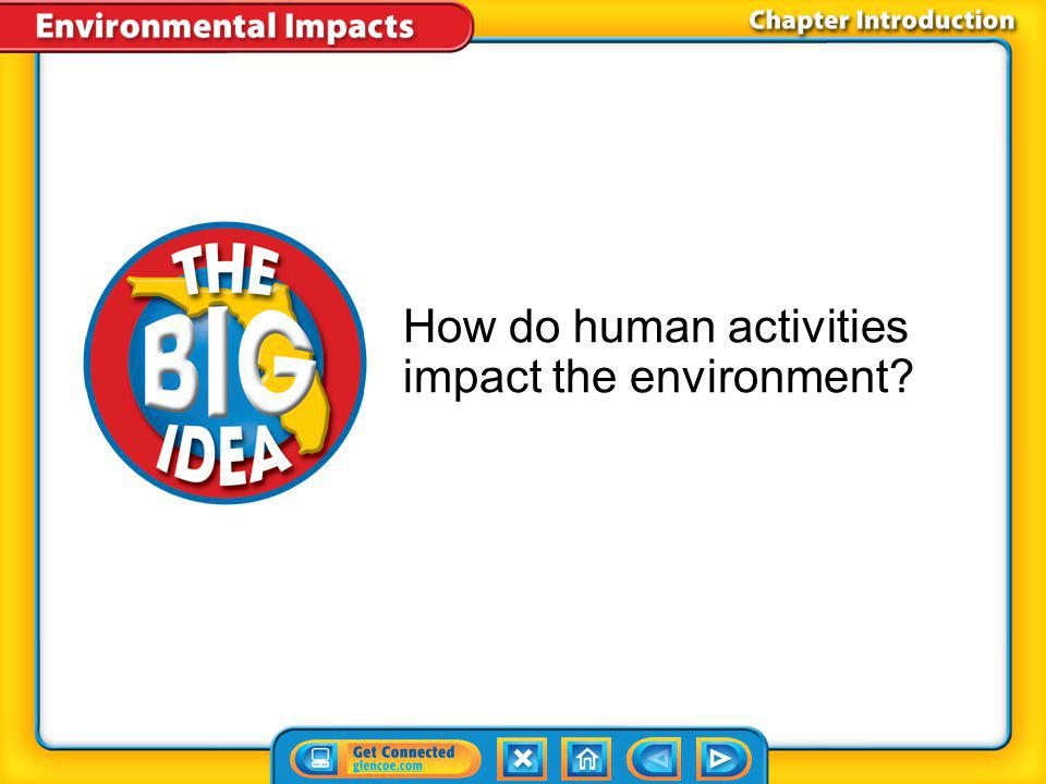 How do human activities impact the environment