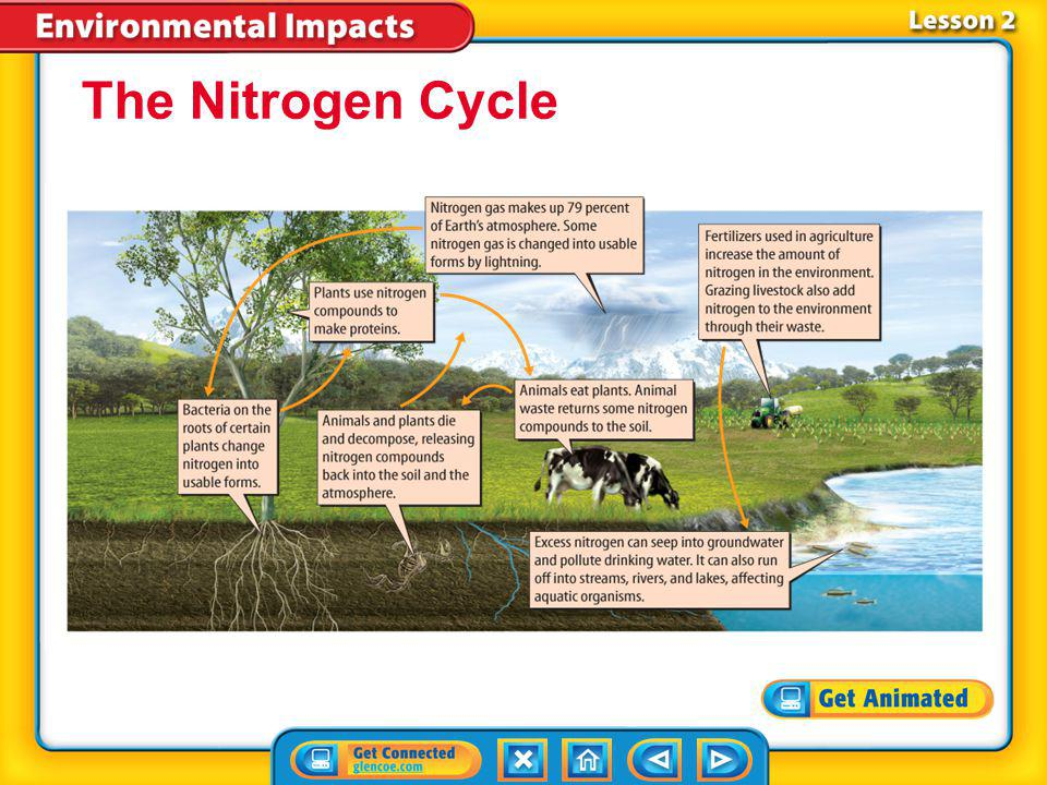 The Nitrogen Cycle Lesson 2-1