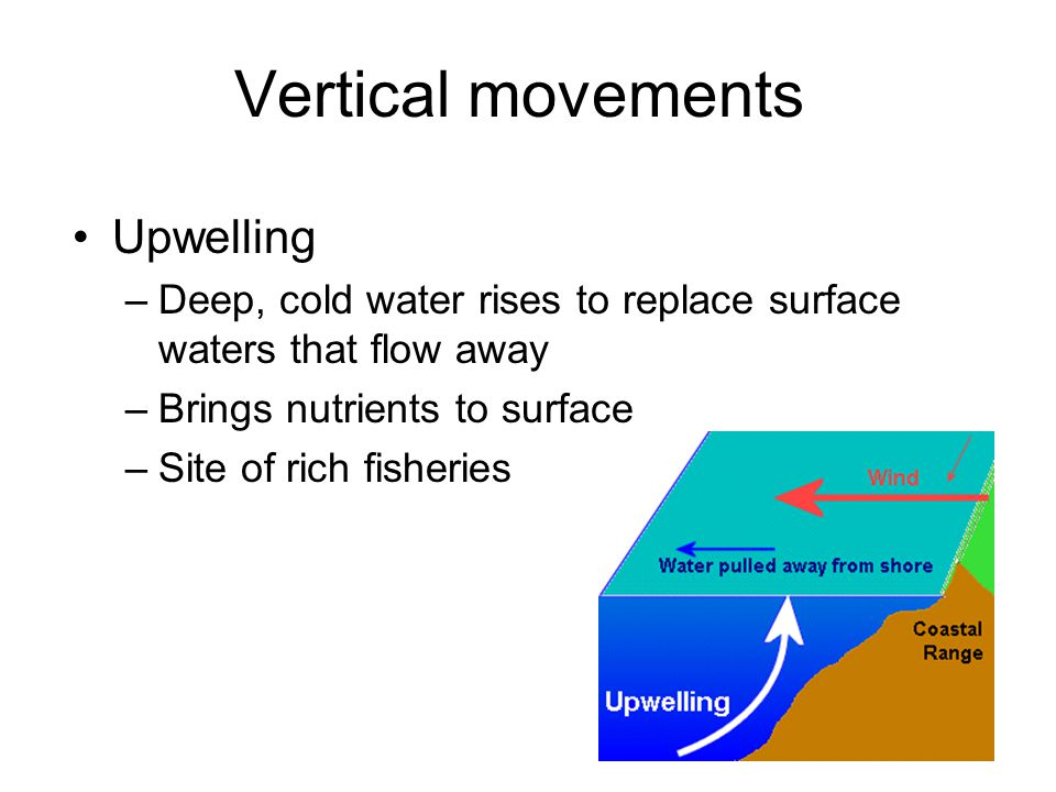 Vertical movements Upwelling