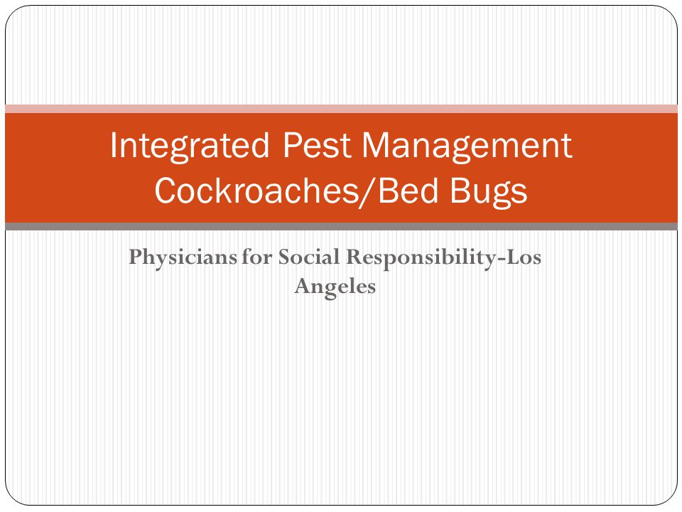 Integrated Pest Management Cockroaches/Bed Bugs