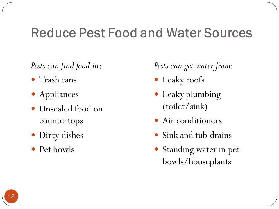 Reduce Pest Food and Water Sources