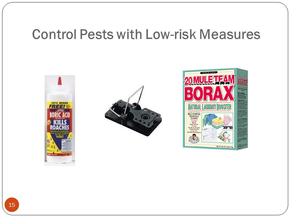 Control Pests with Low-risk Measures