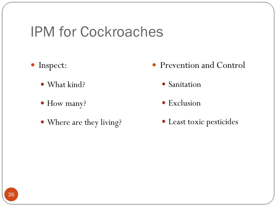 IPM for Cockroaches Inspect: Prevention and Control What kind