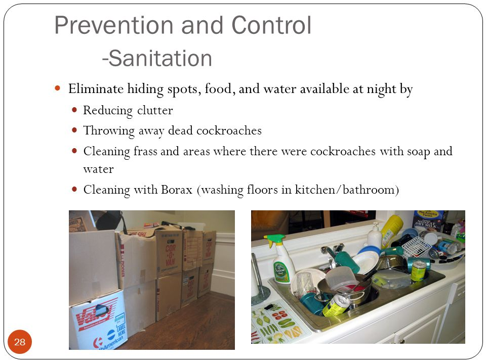 Prevention and Control -Sanitation