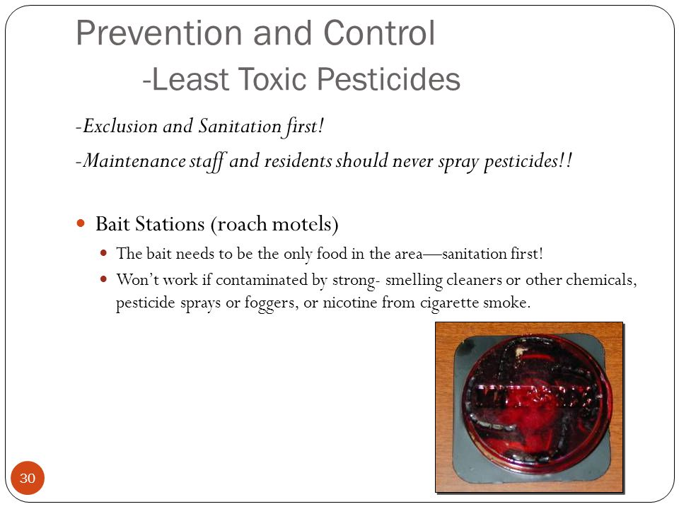 Prevention and Control -Least Toxic Pesticides