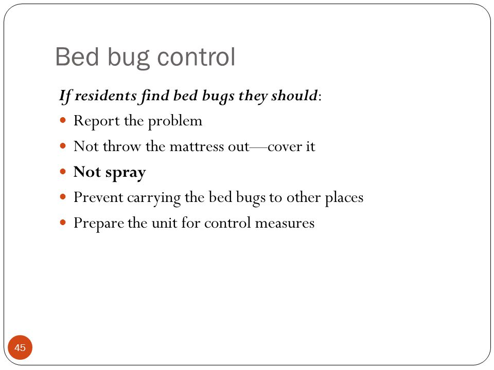 Bed bug control If residents find bed bugs they should: